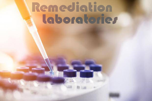 RemediationLaboratories - THC and CBD Biomass for Isolate and Oil